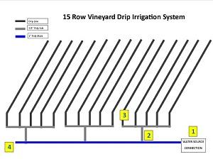 Vineyard Irrigation | Drip Line Installation