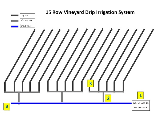 vineyard irrigation